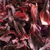 hibiscustea: (Default)