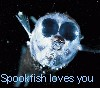 maiaselene: (Spookfish loves you)