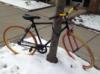 fflo: (bike in snow)