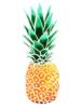 fflo: (pineapp)