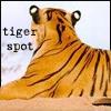 tiger_spot: (spots)