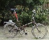 armb: (cycling)