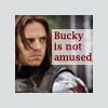 brumeier: (Bucky Not Amused)
