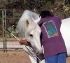dancinghorse: (hug)