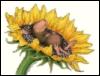 mouse_in_vitro: (мышо поело)