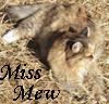 pyrsandponies: (Miss Mew)
