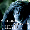 saereneth: (stupidy hurts my head)