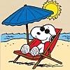 aota: (Summer Time)