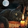 aota: (Cat and candle)