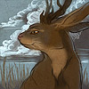 whatwith: (serene jackalope)