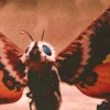 whatwith: (mothra)