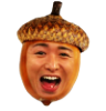 coolohoh: (Nutty Ohno Acorn!)