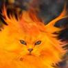 solar_kitten: (fire)