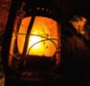 starfishstar: (lantern)