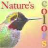 linaelyn: (birding colors by Estel)