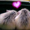 linaelyn: (Ham!Love by versaphile)