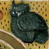 songspinner: (grumpy owl)