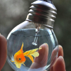 coffeeontherocks: Icon of a hand holding a light bulb with a goldfish in it. (Stock - Goldfish)