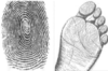 tellepuz: (fingerprint)