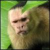 nassus: (grumpy)