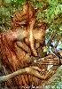 elkek: (дерево)