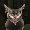 xeningem: (Чеширский кот Честер)