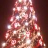 antilla: (Рождество)