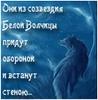 luar_soll: (Созвездие Белой Волчицы)