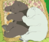 yamneko: (anime, bara, grizzly, polar bear, polar bear cafe)