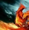 phoenix_avis: (pic#11202679)