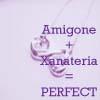 amigone2515: (Perfect)