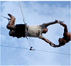 jeremym: (trapeze trap rig fly)