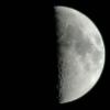vervain13: (Waxing Half Moon)