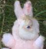 hirez: (Bunny Eye)