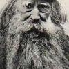 seminarist: (beard)