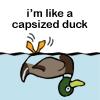 milady_vilya: (duck)