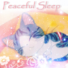 fatchocobomom: (Chi sleep)