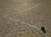 daseiner: (Racetrack Playa, Death Valley)