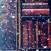 fioreitaliano: (books)