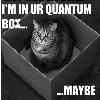 clockworkpixel: (quantum cat)