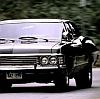arwensouth: (Impala!Peek)
