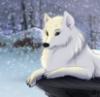 nichego_krome: (милая (в снегу))