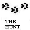 soncnica: (The Hunt)