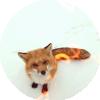 christinafairy: (fox by lon-gina)