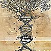 junkerin: (DNA)