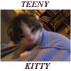 chaiya: (teeny kitty)