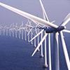anuran: (turbines)