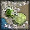 parsnip: (Turtle)