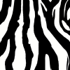msav: (Zebra)