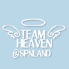yellowhorde: (Team Heaven Icon)